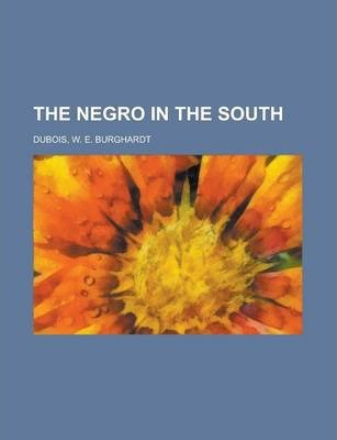 The Negro in the South