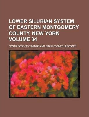 Lower Silurian System of Eastern Montgomery County, New York Volume 34