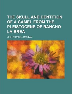 The Skull and Dentition of a Camel from the Pleistocene of Rancho La Brea