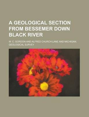 A Geological Section from Bessemer Down Black River