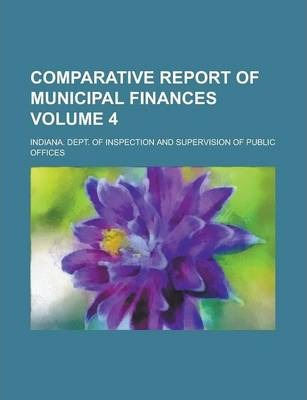 Comparative Report of Municipal Finances Volume 4