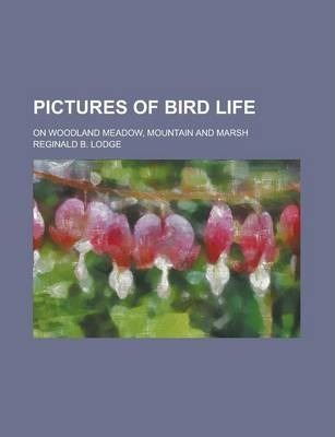 Pictures of Bird Life; On Woodland Meadow, Mountain and Marsh