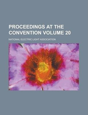 Proceedings at the Convention Volume 20