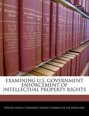 Examining U.S. Government Enforcement of Intellectual Property Rights