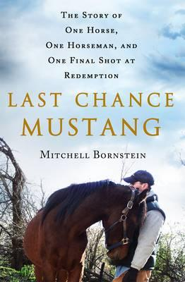 Last Chance Mustang : The Story of One Horse, One Horseman, and One Final Shot at Redemption