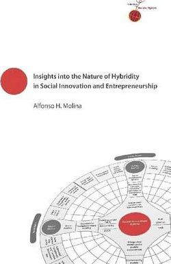 Insights Into the Nature of Hybridity In Social Innovation and Entrepreneurship
