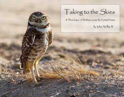 Taking to the Skies: A Photologue of Birds Across the United States