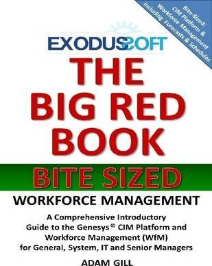 The Big Red Book - Bite Sized - Workforce Management