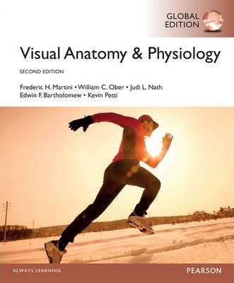Visual Anatomy And Physiology Martini Pdf