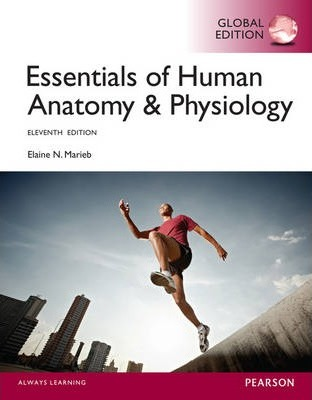 Essentials of Human Anatomy & Physiology with MasteringA&P, Global Edition