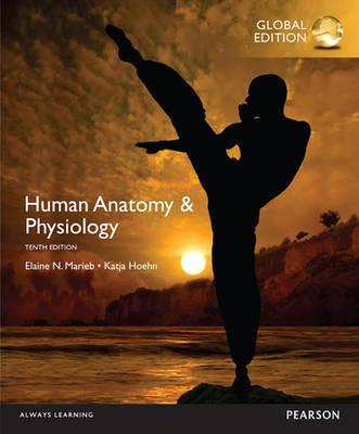 Human Anatomy & Physiology, Global Edition : Katja N. Hoehn ...