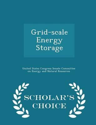 Grid-Scale Energy Storage - Scholar's Choice Edition