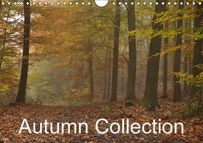 Autumn Collection 2016