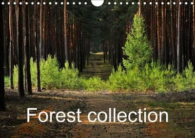 Forest collection 2016