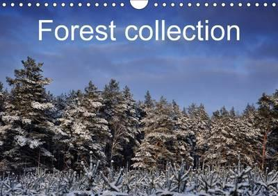 Forest Collection 2017