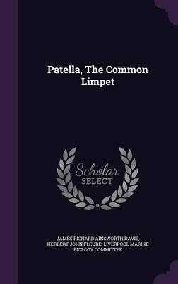 Patella, the Common Limpet