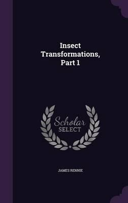 Insect Transformations, Part 1