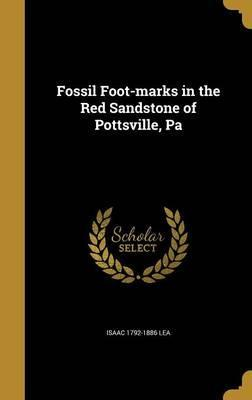 Fossil Foot-Marks in the Red Sandstone of Pottsville, Pa