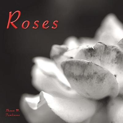 Voyages of Photography : Roses