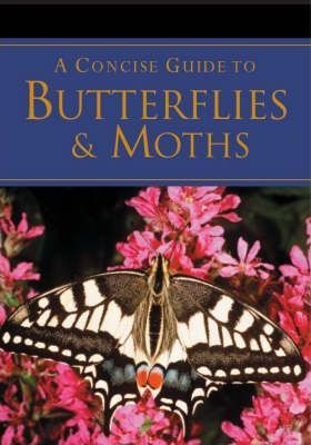 A Concise Guide to Butterflies