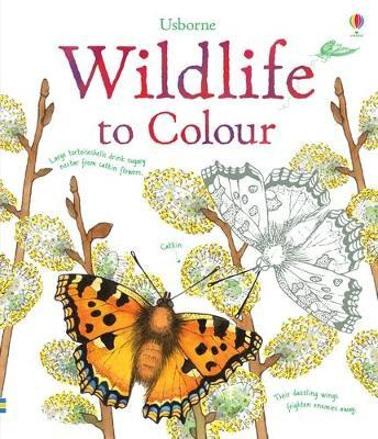 Wildlife to Colour