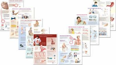 Netter Clinical Charts