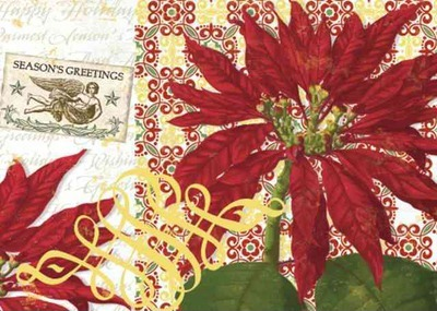 Classic Poinsettia Boxed Holiday Cards