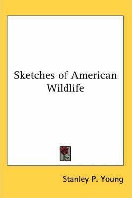 Sketches of American Wildlife