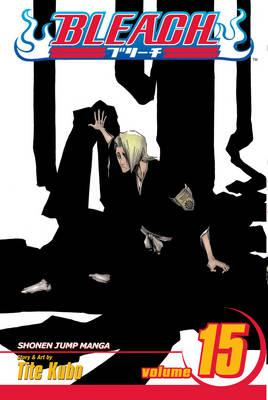 Bleach, Vol. 15 Cover Image