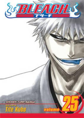 Bleach, Vol. 25 Cover Image