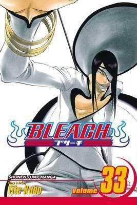 Bleach, Vol. 33 Cover Image
