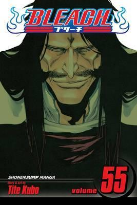 Bleach, Vol. 55 Cover Image
