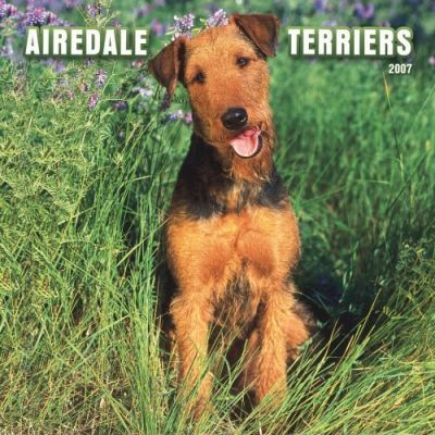Airedale Terriers 2007 Calendar