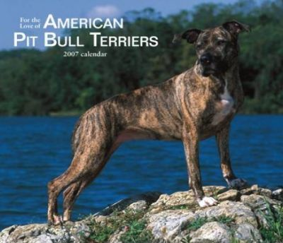 For the Love of American Pit Bull Terriers 2007 Deluxe Calendar