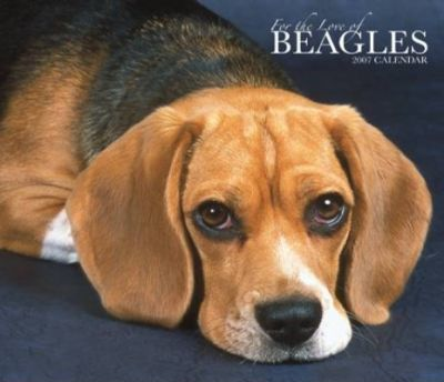 For the Love of Beagles 2007 Deluxe Calendar