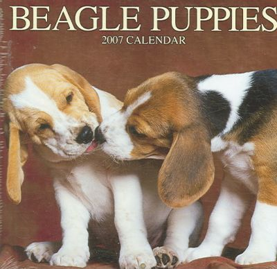 Beagle Puppies 2007 Calendar