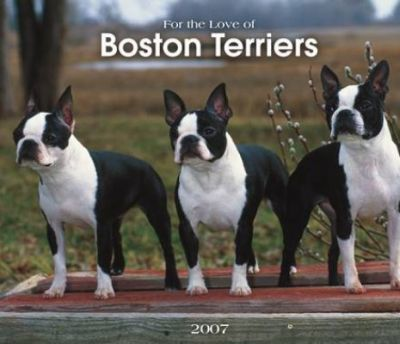 For the Love of Boston Terriers 2007 Deluxe Calendar