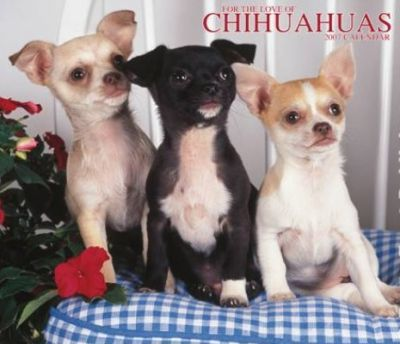 For the Love of Chihuahuas 2007 Deluxe Calendar