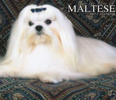 For the Love of Maltese 2007 Deluxe Calendar