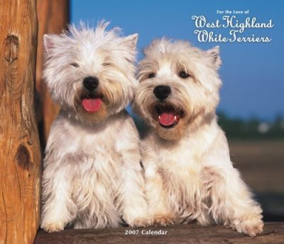For the Love of West Highland White Terriers 2007 Deluxe Calendar