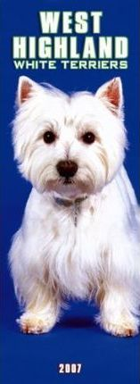 West Highland White Terriers - 2007 (Slim)
