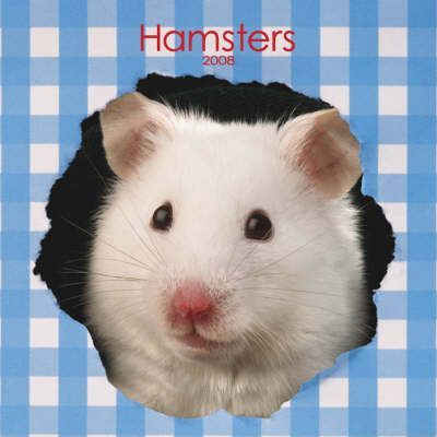 Hamsters 2008 Square Wall