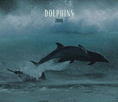 Dolphins 2008 Deluxe Wall