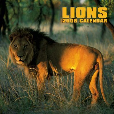 Lions 2008 Square Wall