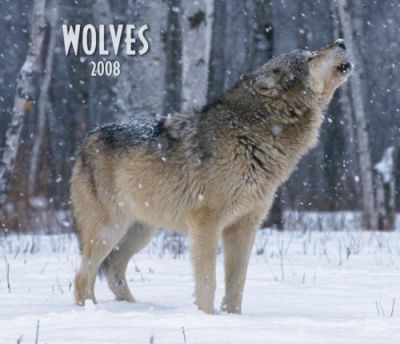 Wolves 2008 Deluxe Wall
