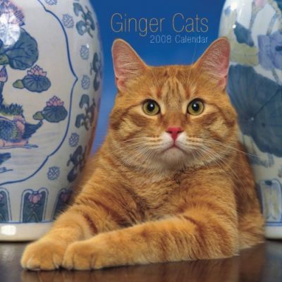 Ginger Cats 2008 Square Wall