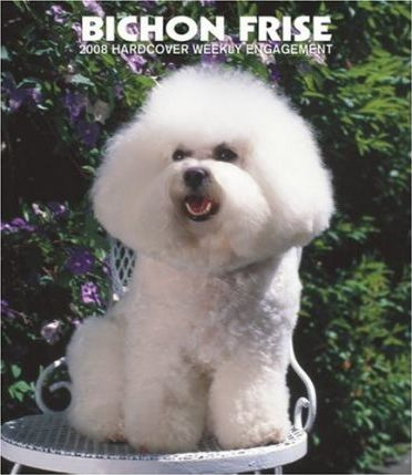 Bichon Frise 2008 Hardcover Weekly Engagement