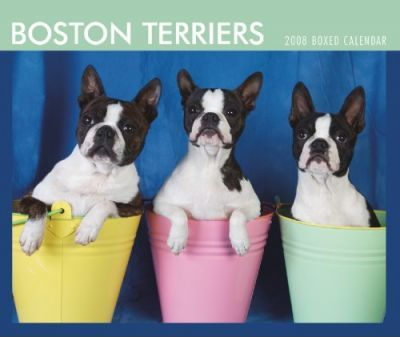 Boston Terriers 2008 Boxed