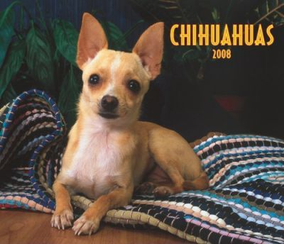 Chihuahuas, for the Love of 2008 Deluxe Wall