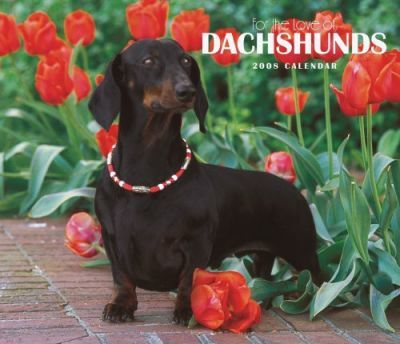 Dachshunds, for the Love of 2008 Deluxe Wall